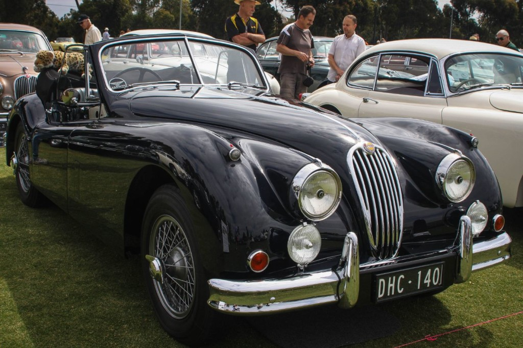 Jaguar Car Club of Victoria 50th Anniversay and Concours d'Elegance