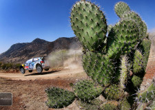 Volkswagen WRC on target in Mexico